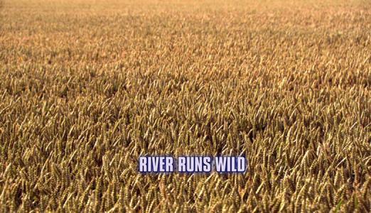 Doctor Who: River Runs Wild